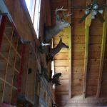 cabin #1 - living room 9