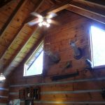 cabin #1 - loft view 3