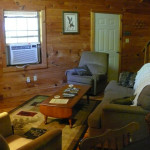 cabin 4 living room 10